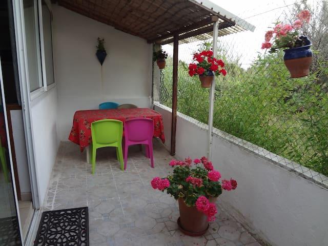 Palavas Studio26m,terrasse park privé ,plage à 1mn