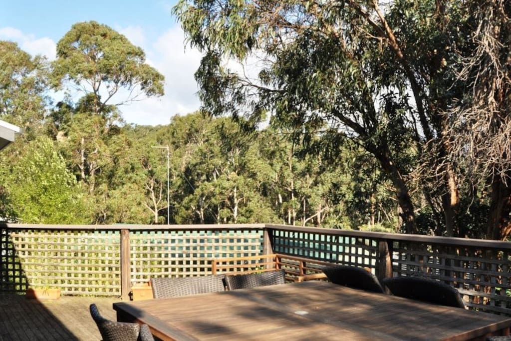 Elevated deck overlooks the Otway National Park