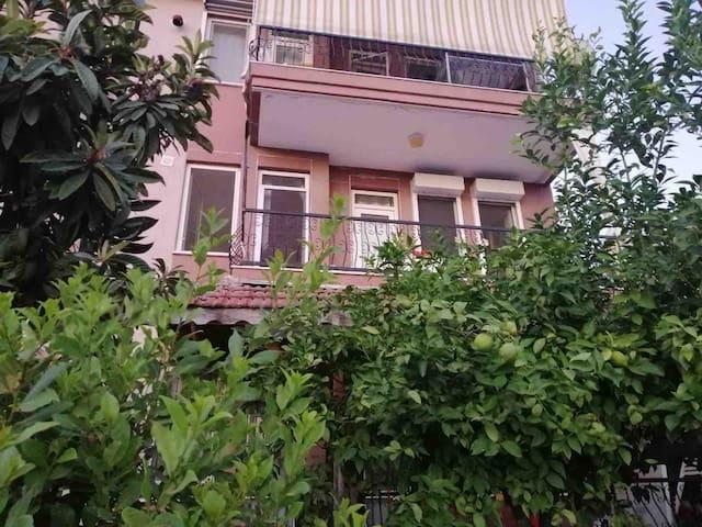 Cosy Grandma's House