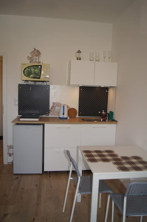 Small Studio For 2 people in Prague