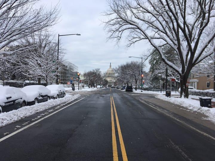 Capitol Hill Haven