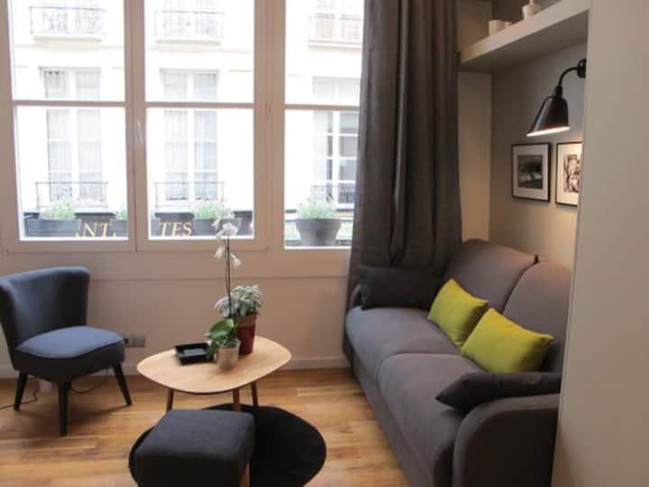 Louvre cosy studio loft