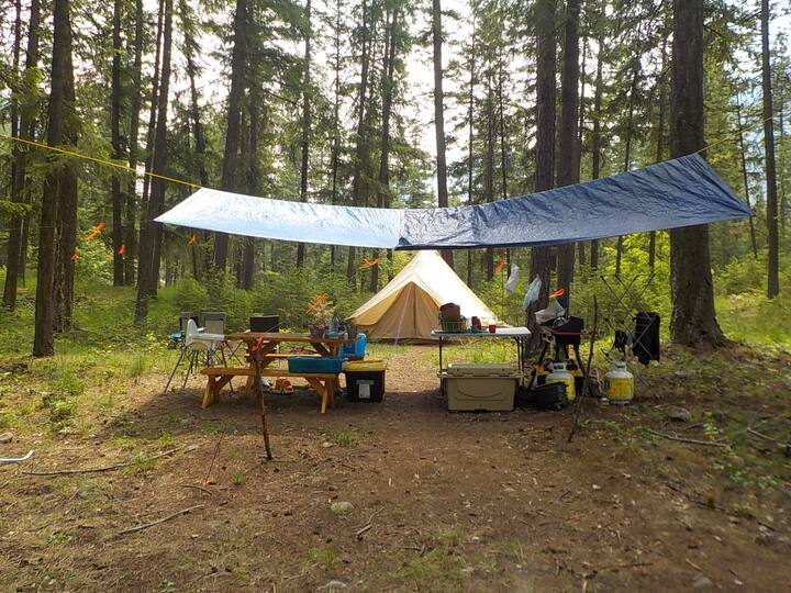 Valhalla Pines Tent Site 5 w/ wifi and amenities