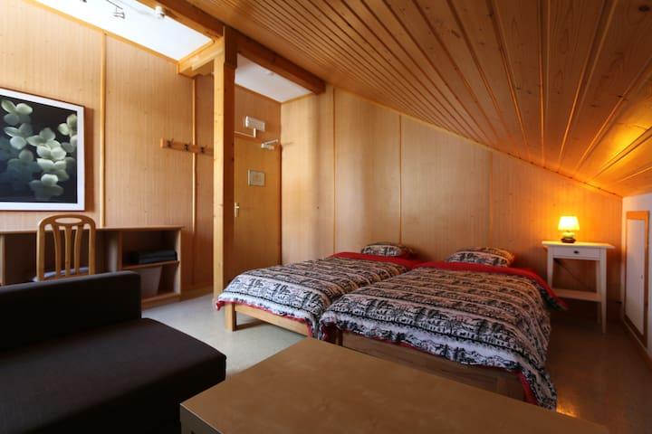 Chambre double en plein coeur des Alpes Vaudoises