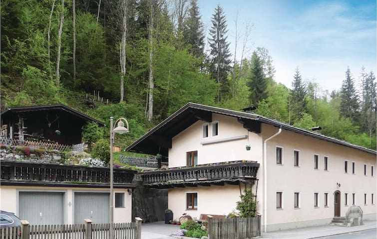 Holiday apartment with 1 bedroom on 30m² in Mühlbach am Hochkönig