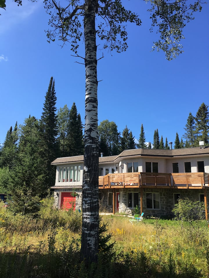 Huge, cozy, artistic home; 2 fireplaces on 3 acres