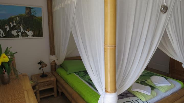 1 Chambre chez l'habitant dans villa