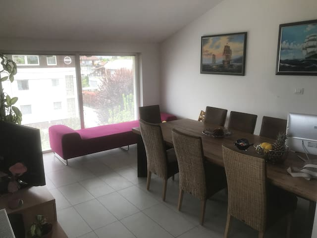 Penthouse Duplex terrace apartment FORTUNA