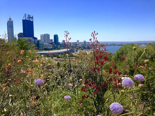 Walk to Kings Park, the Swan and St Georges Tce - Perth - Leilighet