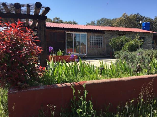 Cabaña/Cottage y ¡momentos únicos! - Colmenar Viejo - Stuga