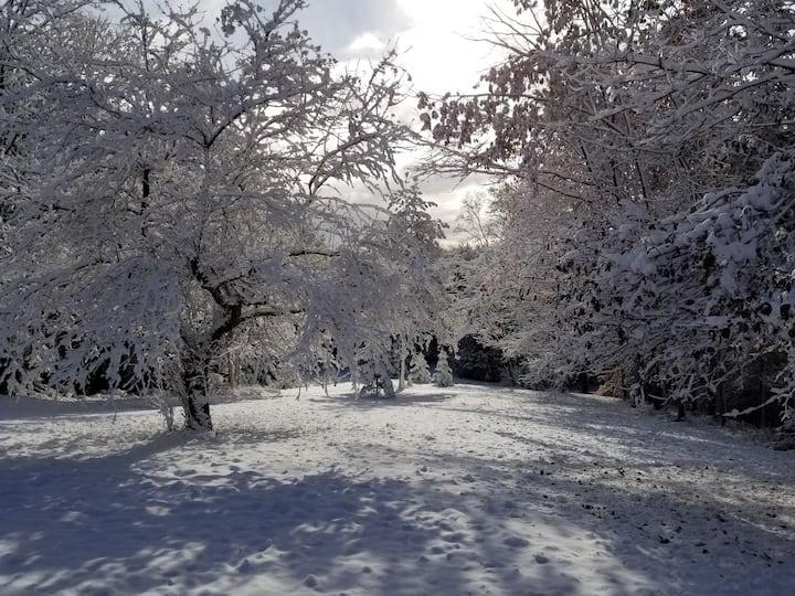 10Acre Private Cottage w/ HotTub @WinterWonderland