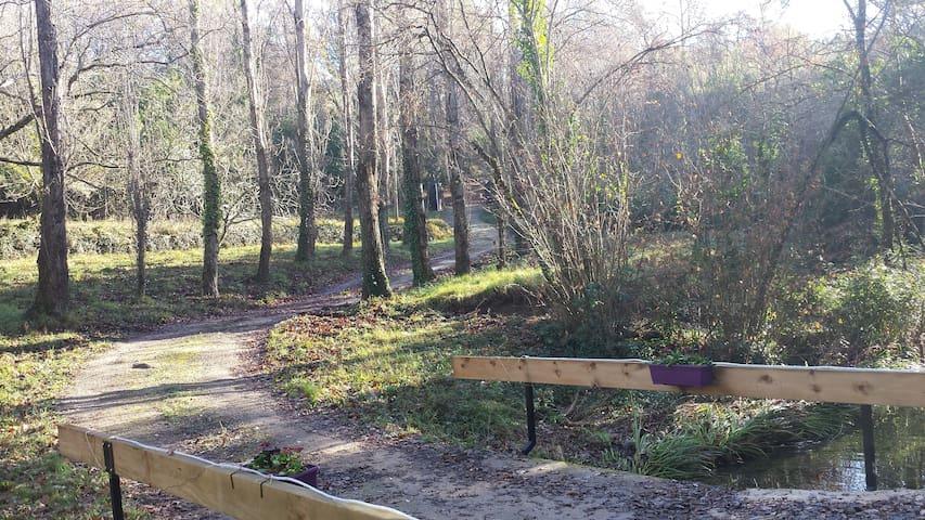 Domaine provençal rivière, écrin de verdure - Fayence - Villa
