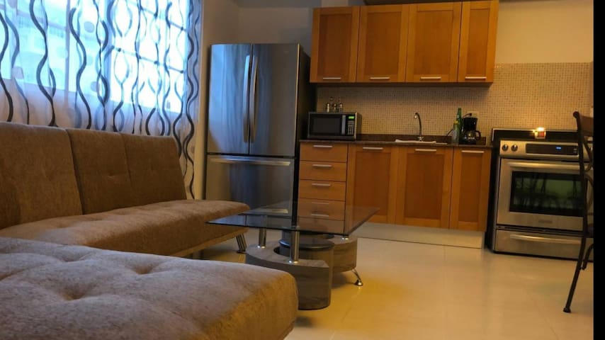 Modern and Beautiful Apartment in Gazcue