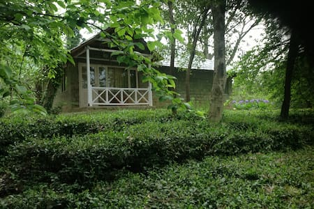 Two bedroom Iris Cottage at Tea Garden Resort - Palampur - Bungalow