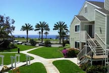 Casa Strands