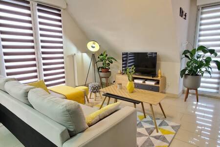 Appartement ☆☆☆☆ SPA, 3 chambres proche Colmar