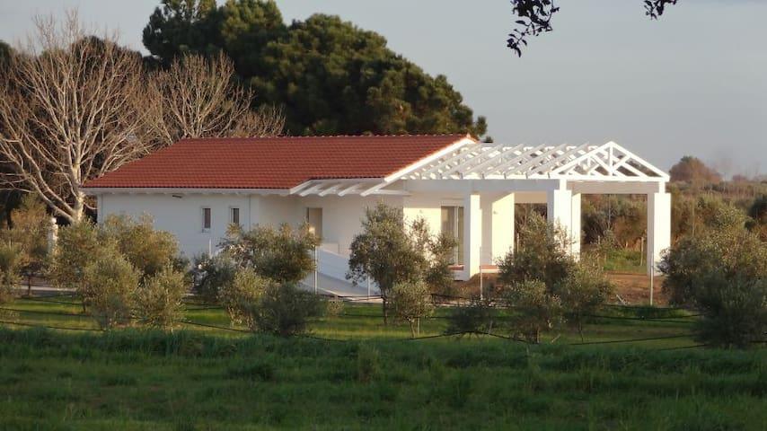White Villas - Beach Villa - Douneika