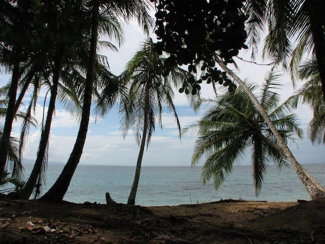Alojamiento a pocas cuadras del mar - La Ceiba - บ้าน