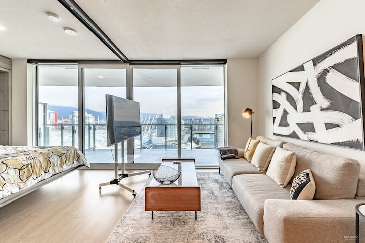 Zodiac Palace Downtown Penthouse Level 1BD+1Den #7
