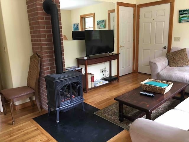 Gas fireplace with TV in living room