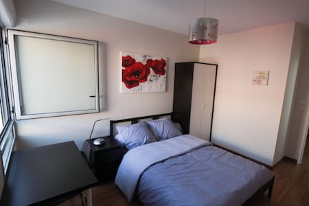 Private Room, Bathroom in morden house with garden - Blagnac