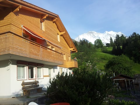 millien dollar view Wohnung in WENGEN