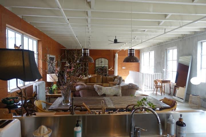 Warm, Comfortable, and Joyful Loft in Brooklyn
