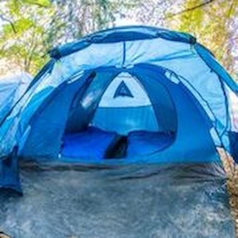 Twin share tent