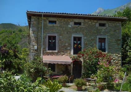Casa Asturias vista Picos de Europa - Casa