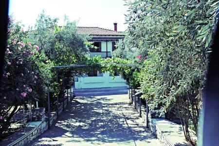 Rooms to let in beautiful town secret garden - Skiathos