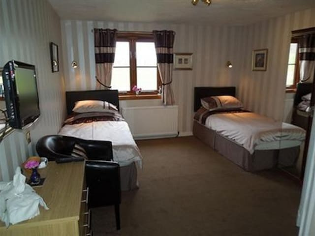 Twin Room at Ardoch Cottage Bed and Breakfast