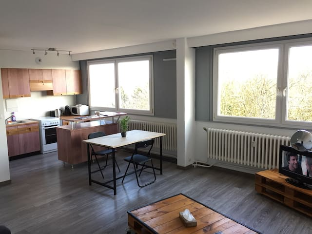 Appartement Calme & Lumineux, hyper centre - Cambrai - อพาร์ทเมนท์