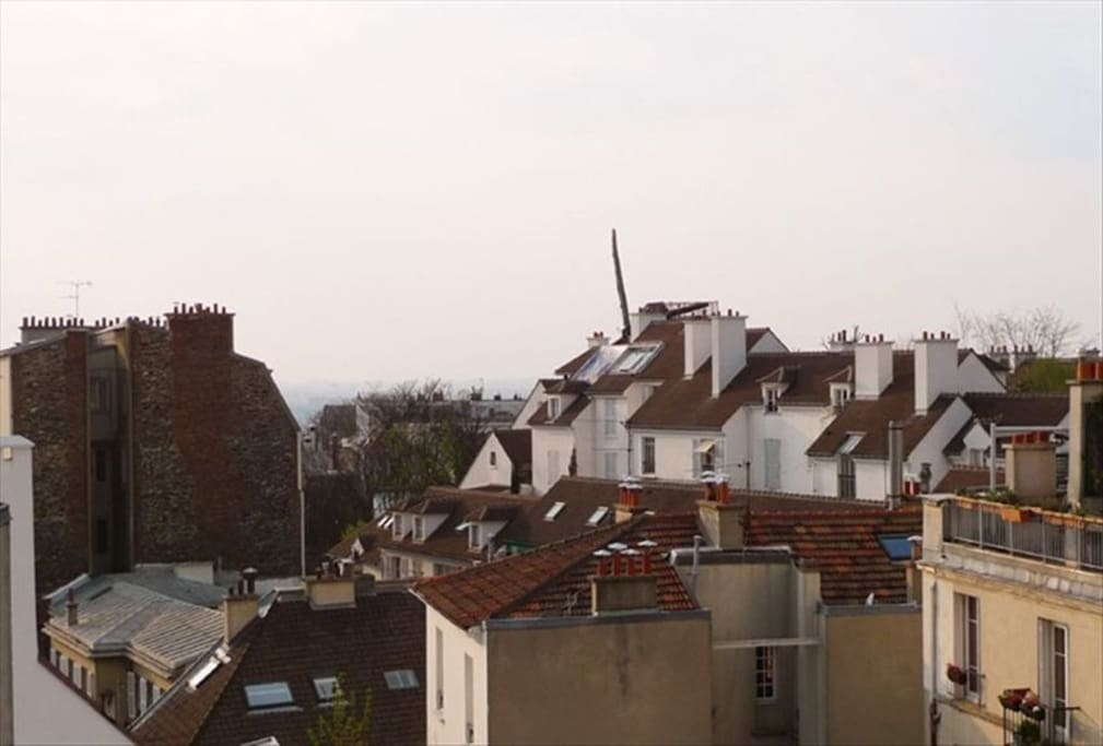 ORCHAMPT - View over Paris Roofs & The Windmill