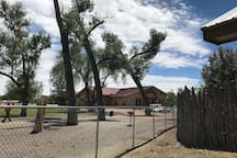 Alamosa library minutes away