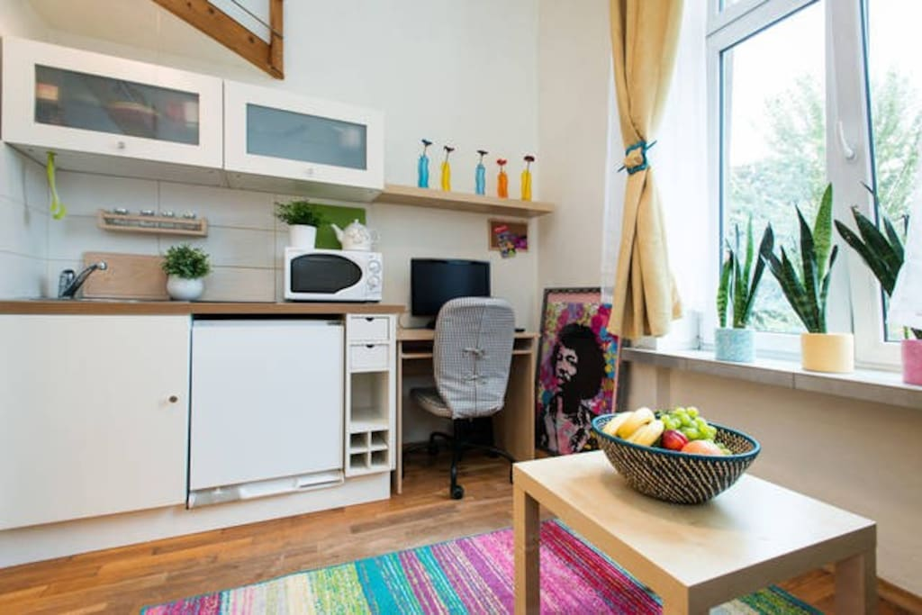 small living room with a kitchenette