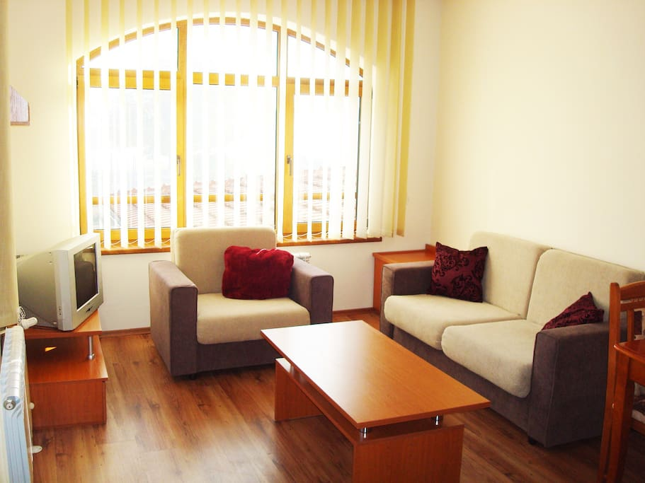 Living room with double sofa bed and single bed chair
