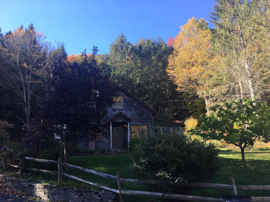 The house in pre-peak Fall colors.
