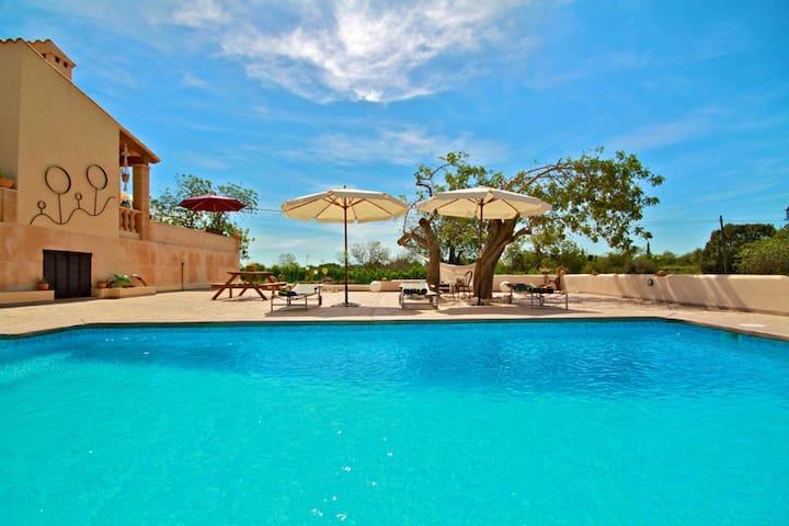 Pool bereich mit Terrasse  im-web.de/ Mallorcareise SL