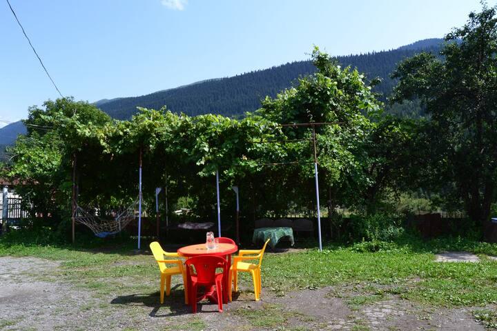 Irina's Guesthouse in Mestia
