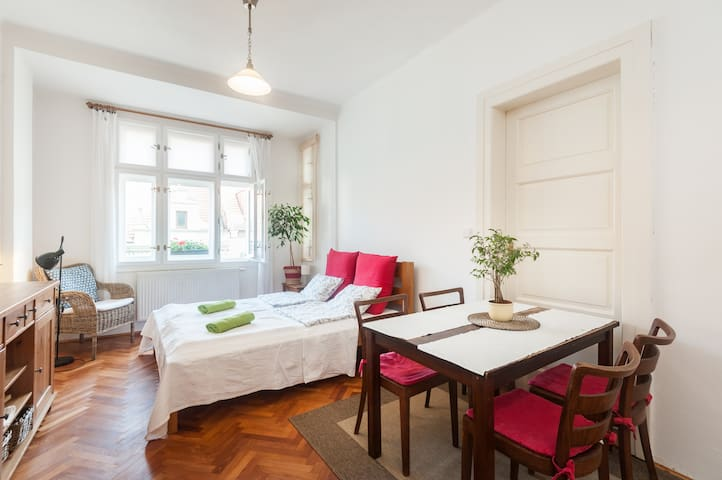 Near Prague castle, bright, quiet and cosy flat