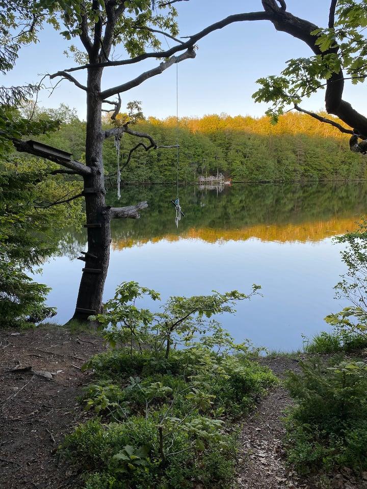 A lakeside accommodation at popular Danish Falls