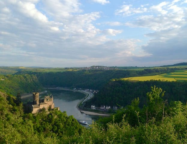 Rosemary`s Apartment with unique view on Loreley