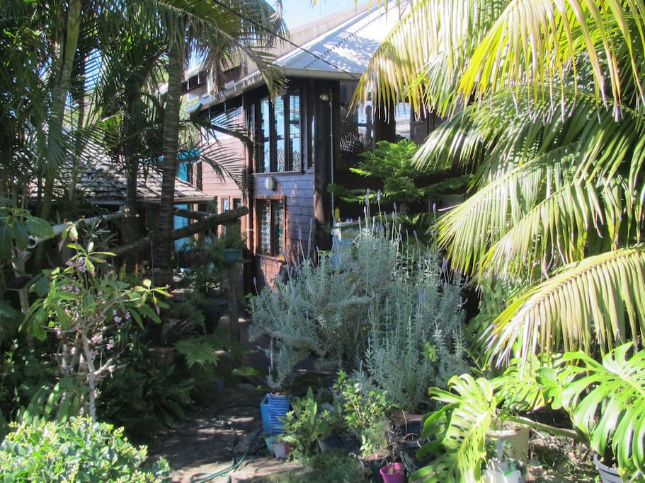 Angourie lethargy lodge beach house blue room treehouses for Pool builders yamba