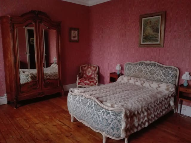 Jolie chambre dans un hôtel particulier - Jarnac - Bed & Breakfast
