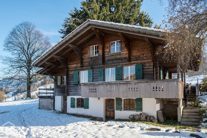 Gorgeous Swiss Chalet with amazing views!