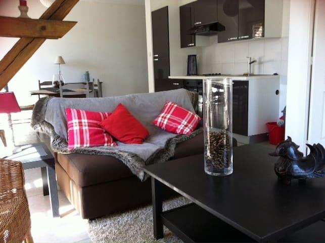 Appt de standing à 25 mn de Roissy - Longueil-Sainte-Marie - Apartemen