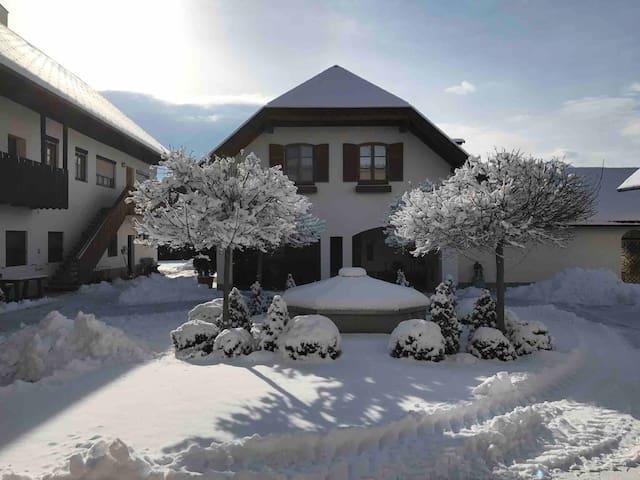 Geräumige Wohnung mit Zugang zum Garten-Pool (lV)