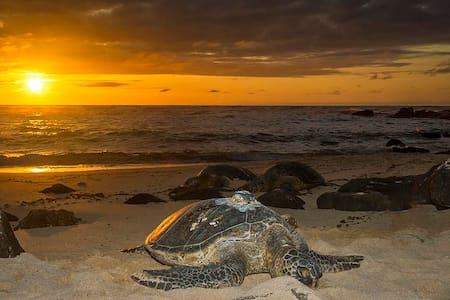 II True Hawaiian Getaway w/Pool! - Waianae