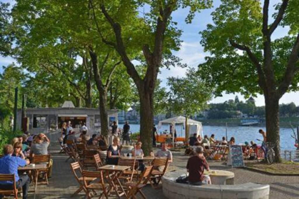 5 minute walk to the Rhein