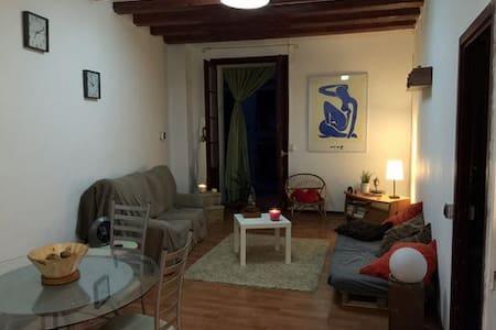Charmant T1 de 48m2 dans le Centre de Barcelone - Barcelona - Apartment